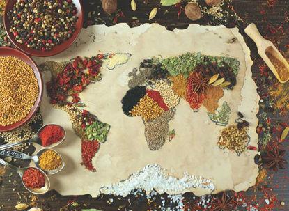 Baharatlı Dünya Haritası    1000P resmi
