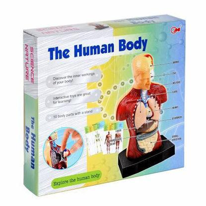 Human Body resmi